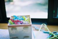 洗濯バサミがカラフル。 - Yuruyuru Photograph