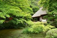 ■■ 初夏の吉水園 - Tatu-tatu兄やんBlog