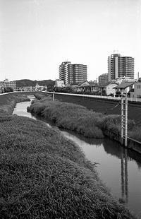 住宅街の河川 - そぞろ歩きの記憶