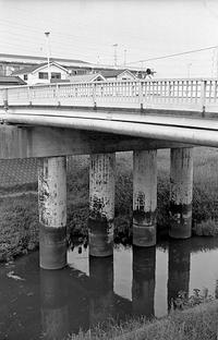 住宅街の河川(その3) - そぞろ歩きの記憶