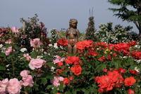 六月に咲く - 日々の記憶と思考