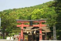 初夏の琵琶湖 - 浜千鳥写真館