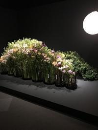 マミフラワーデザイン展 - 小さな庭 2