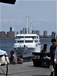 藤田八束の人生楽しく暮らす方法@仕事だけが人生ではない、趣味の世界に活路を求める・・・人生それでいいですか? - 藤田八束の日記