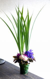 いぬねこ雑貨のお店のオープンにアレンジメント。南12条にお届け。2019/05/28。 - 札幌 花屋 meLL flowers
