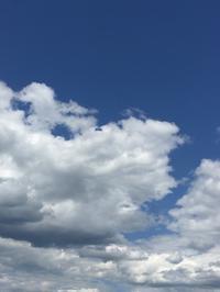 オホーツクブルーの空の下 - ヘブンリーブルーの咲く朝に
