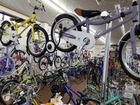 コーダブルームいっぱい - 滝川自転車店