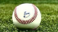 インターリーグ………と MLB - SPORTS 憲法  政治