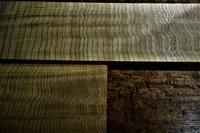 木に宿るもの - SOLiD「無垢材セレクトカタログ」/ 材木店・製材所 新発田屋(シバタヤ)