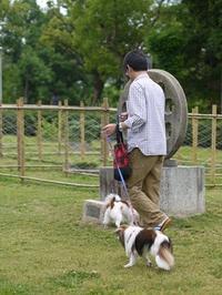 てくてくお散歩。。。緑地公園 - ロビンとルークと有のスローライフ ~episode2~