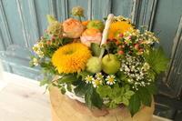 出産祝いの花 - 北赤羽花屋ソレイユの日々の花