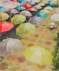 Sing'In In The Rain。 - advance