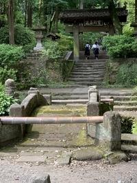 北鎌倉で金継ぎ - さんしゅゆの花