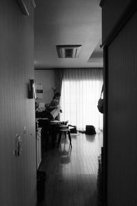 「三ヶ森のリノベーション」完成見学会を開催します☆ - プロトハウス通信〜住まいは生き方