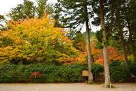 室町時代の庭園が残る多気北畠氏城館跡を訪ねて。<後編>武家庭園 - 坂の上のサインボード