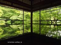 瑠璃光院の新緑シャワー@京都でオフ会 - アリスのトリップ2