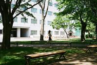 キャンパスランウエイ - 照片画廊