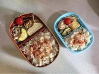 豚肉とズッキーニの炒め物 - 庶民のショボい弁当