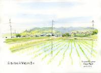 大原野北春日 - 風と雲