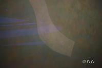 メイプルソープと抽象画と / Mapplethorpe & abstract arts - Seeking Light - 光を探して。。。