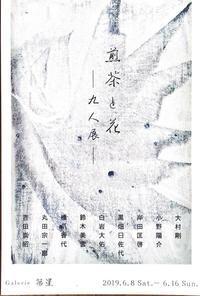2019年6月煎茶と花 - 吉田崇昭 うつわと日々