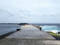 土曜市と底土園地  ◆八丈島の旅⑧◆ - Emily  diary