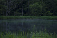 緑、深く - ekkoの --- four seasons --- 北海道