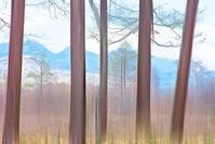 奥日光戦場ヶ原 4 - 光 塗人 の デジタル フォト グラフィック アート (DIGITAL PHOTOGRAPHIC ARTWORKS)