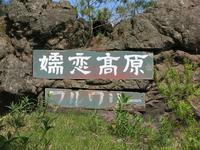 嬬恋高原ブルワリー - 月の光 高原の風 かなのブログ