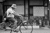 初夏 - tonbeiのはいかい写真日記