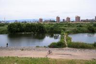 淀川河畔 - tonbeiのはいかい写真日記