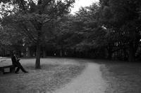 kaléidoscope dans mes yeux2019半径500メートルの情景#83 - Yoshi-A の写真の楽しみ
