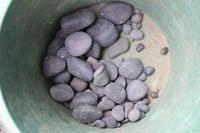 石拾いモッコ岩と海浜植物 - 四季のうつろい