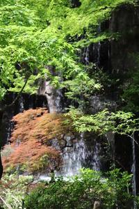 水しぶきを浴びて快適な一時を! - 一場の写真 / 足立区リフォーム館・頑張る会社ブログ