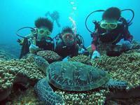 真っ青な海でファミリー体験ダイビング! - 石垣島てぃだダイビングサービス