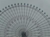 それぞれの逞しい人生 - hibariの巣