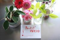 5月のレッスン報告と6月のお知らせです - お片付け☆totoのえる  - 茨城・つくば 整理収納アドバイザー