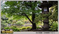 「旧古河庭園」日本庭園をぐるりと・・ - デジカメ散歩写真
