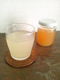 柑橘のジンジャーシロップ - Minha Praia