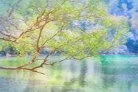 奥日光湯の湖 3 - 光 塗人 の デジタル フォト グラフィック アート (DIGITAL PHOTOGRAPHIC ARTWORKS)