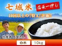 七城米長尾さんこだわりのお米(ひのひかり)大好評販売中!令和元年の米作りも美しすぎる苗床なんです! - FLCパートナーズストア