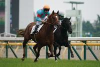 新馬戦スタート、そして、ガンバレ藤田騎手。 - Turfに魅せられて・・・(写真紀行)