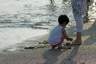 海のしらべ - あおいくまの子守歌