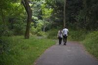 静かな散歩道 - summicron