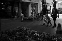 kaléidoscope dans mes yeux2019新潟島#48 - Yoshi-A の写真の楽しみ