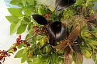 カフェ1周年祝いの花 - 北赤羽花屋ソレイユの日々の花