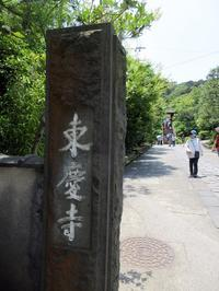 【北鎌倉・東慶寺の初夏の花々2019】 - お散歩アルバム・・梅雨空の下で(いつになったら晴れるのやら)