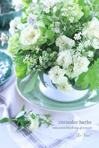 HerbsとRoseをコランダーに - Le vase*  diary 横浜元町の花教室
