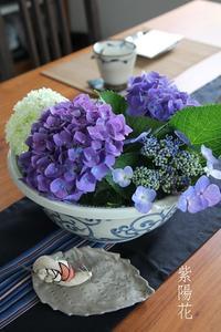 今年の紫陽花 - SUGAR & BUTTER