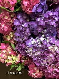 定休日変更のお知らせです。 - 暮らしに花を 〜    花あざみ安城  0566‐77-4187